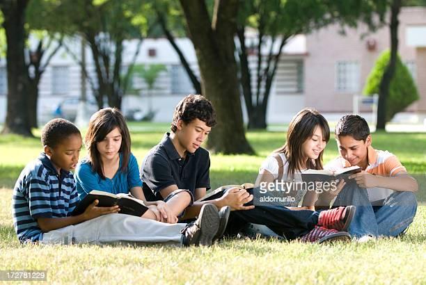 Gruppo di amici che studiano insieme