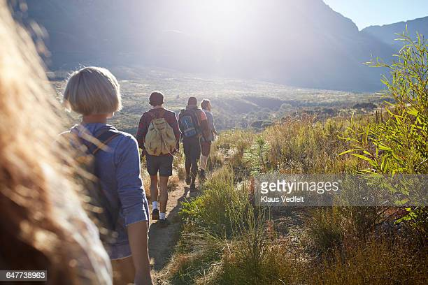 Group of friends trekking in the mountains