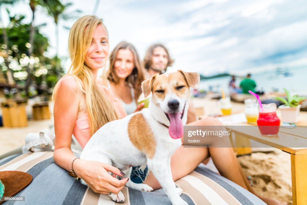 Group of friends - two girls and one guy - at the beach cafe. Funny dog with them : Stock Photo