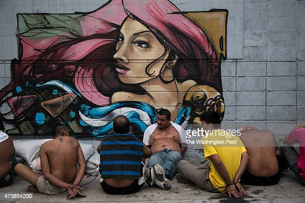 SALVADOR MAY 2015 A group of gang members of the Barrio 18 revolucionarios were arrested during a police operation in a crowded neighborhood of...