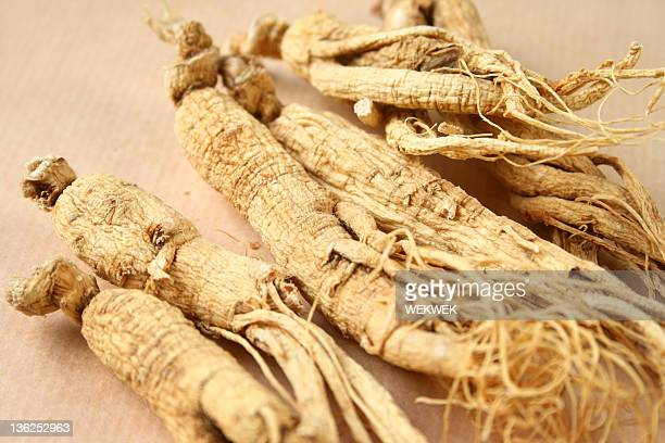 Group of ginseng root