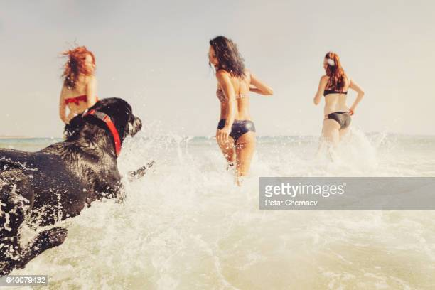Group of girls and a dog running in the sea