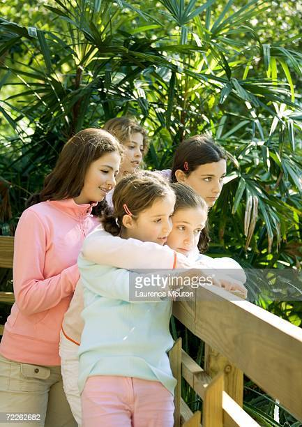 Group of girls looking over wooden fence