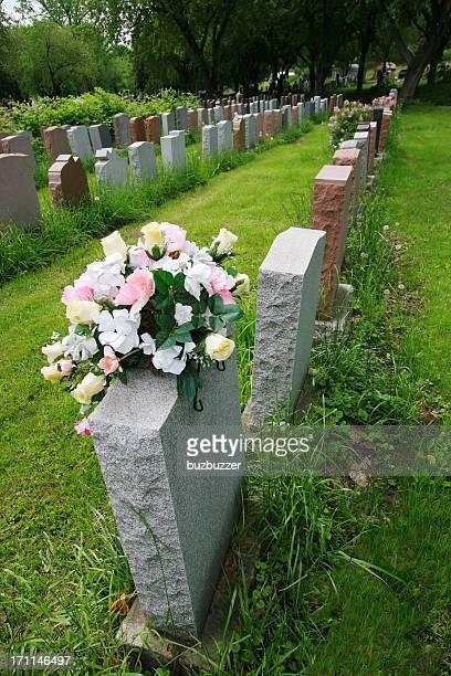 グループの石の墓墓地 - buzbuzzer ストックフォトと画像