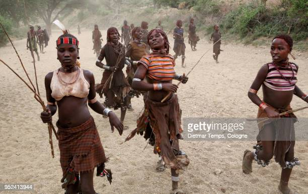 a group of hamer women, ethiopia - dietmar temps stock photos and pictures