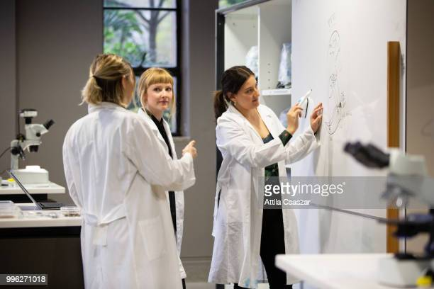 Group of happy female scientists working in laboratory