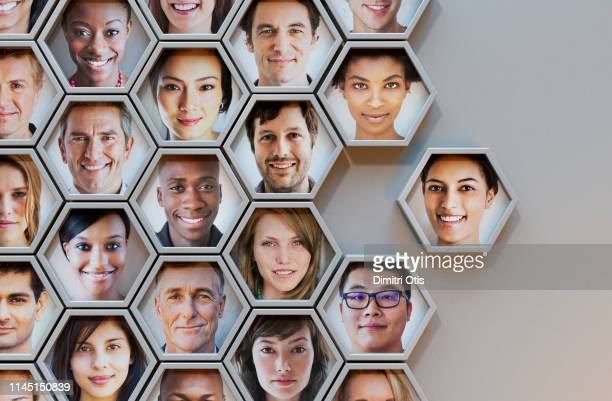group of hexagonal portrait pods, one joining - multi etnische groep stockfoto's en -beelden