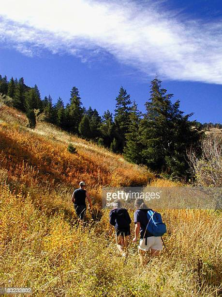 group of hikers in a trail in autumn - foothills stock pictures, royalty-free photos & images
