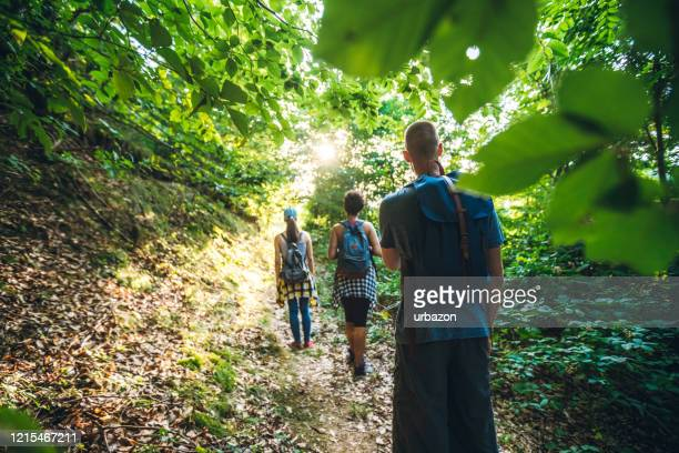 group of hikers in the forest - wilderness stock pictures, royalty-free photos & images