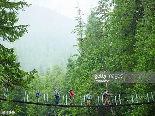 Group of hikers on suspension bridge