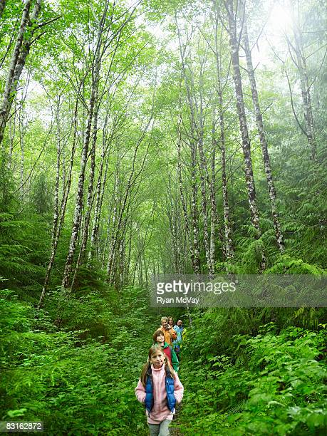 Group of hikers walking along forest trail.