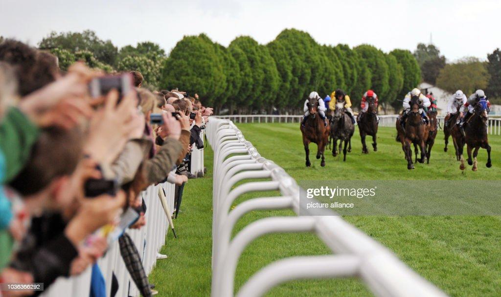 A Group Of Horses And Jockeys Races Towards The Finish On Last Day