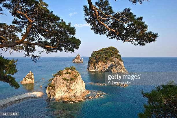 Group of islands through pine branches