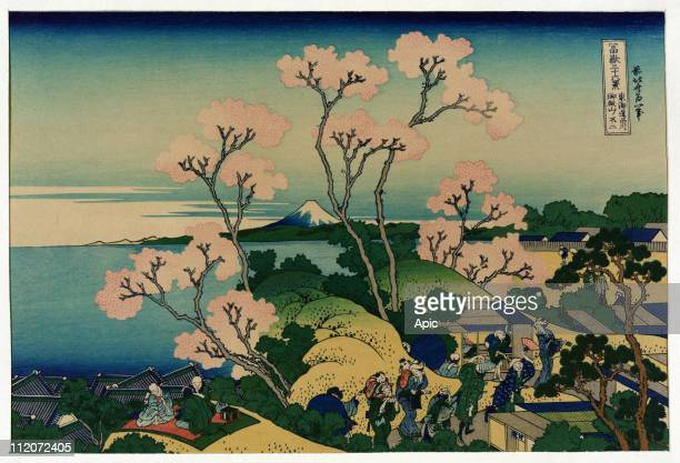 A group of japanese people under cherry trees at blossom time in Shinagawa Tokaido Road Japan with view of Mount Fuji in the distance japanese...