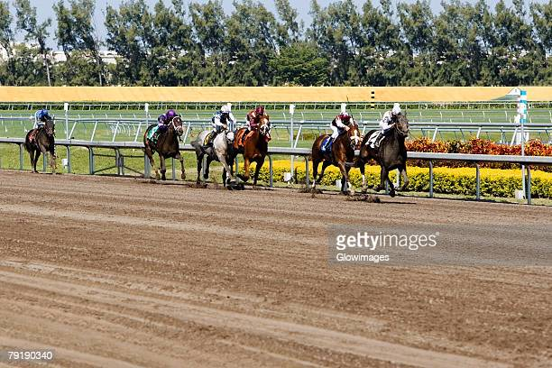 group of jockeys riding horses in a horse race - horse racecourse stock photos and pictures