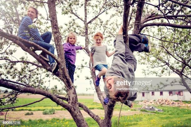 Gruppe von Kindern beim Spielen in einem blühenden Apfelbaum.