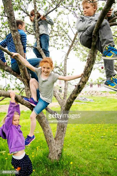 Group of kids playing in a blossoming apple tree.