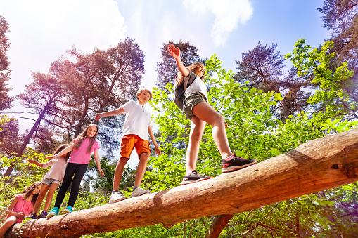 Group of kids walk over big log in the forest 1094443430