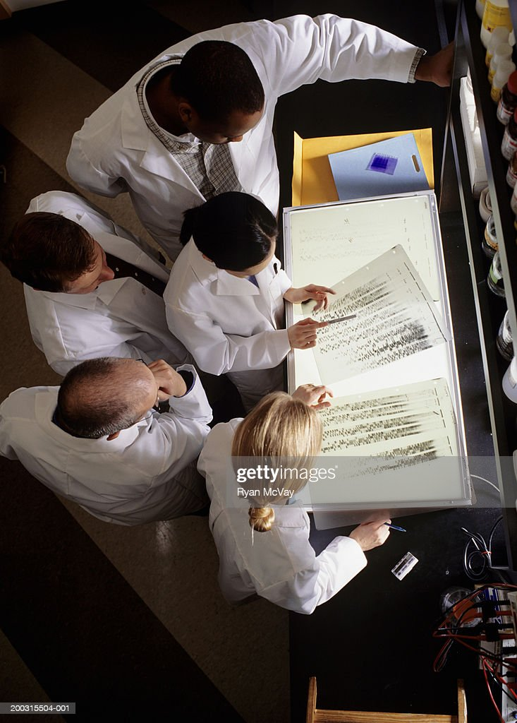 Group of laboratory technicians examining data on light box, overhead view : Stock Photo