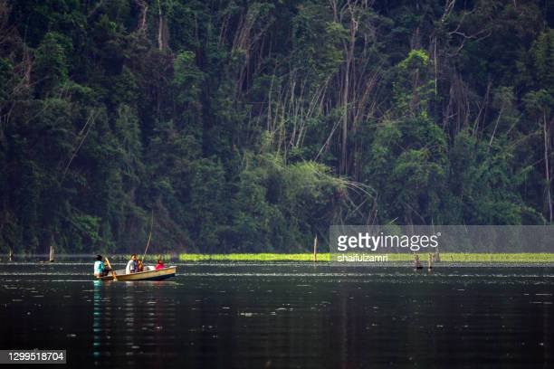 group of local people paddling a boat going home as part of daily life on royal belum rainforest park. - shaifulzamri foto e immagini stock