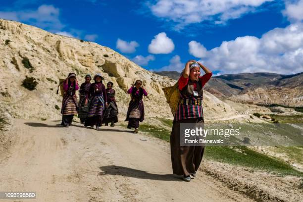 Group of local women, carrying baskets, is walking along a gravel road in the barren landscape of Upper Mustang.