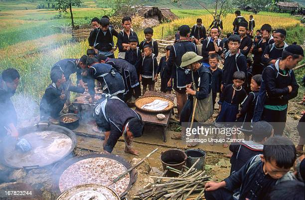Group of male Black Hmong dressed in their traditional dark blue clothes cooking together among green rice fields. The Hmong are an Asian ethnic...