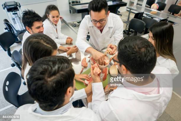 Group of medical students in an anatomy class