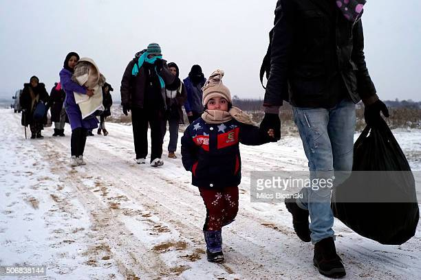 A group of migrants walk in sub zero temperatures near the MacedonianSerbian border on January 26 2016 in Presevo Serbia Migrants have been braving...