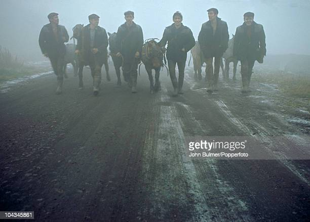 A group of miners with their pit ponies in Waldridge County Durham circa 1963