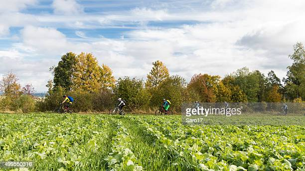 group of mountainbikers in autumn waldviertel, lower austria - cross country cycling stock photos and pictures