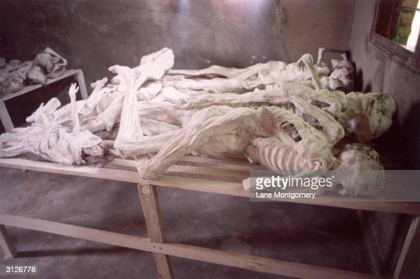 A group of mummified bodies lie on a table in a school building that was the scene of a massacre during the genocide in Rwanda Murambi Province of...