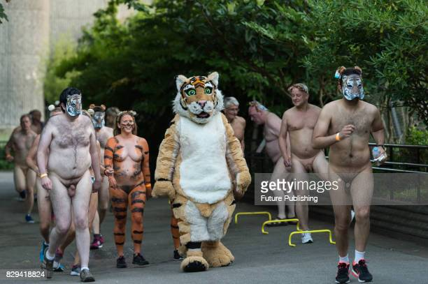 A group of naked fundraisers take part in 'Streak for Tigers' run around London Zoo to raise money for Zoological Society of London's tiger...