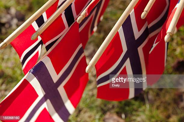 Group of Norwegian flag in red white and blue.