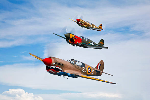 A group of P-40 Warhawks fly in formation near Nampa, Idaho.