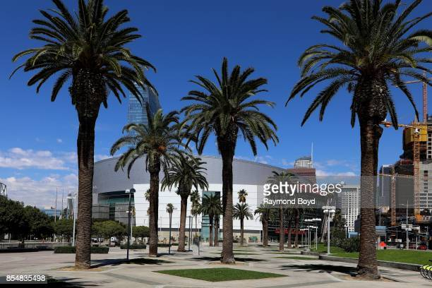 A group of palm trees sits outside the Los Angeles Convention Center in Los Angeles California on September 11 2017