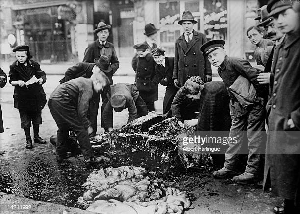 A group of passersby pose as several men women and children butcher a horse fallen in the street for its meat Berlin Germany 1920s