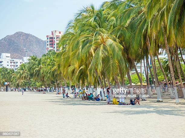 group of people against palm trees on beach - barranquilla stock pictures, royalty-free photos & images