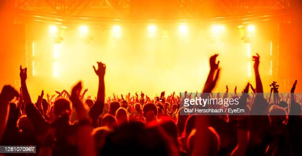 group of people at music concert - concert photos et images de collection