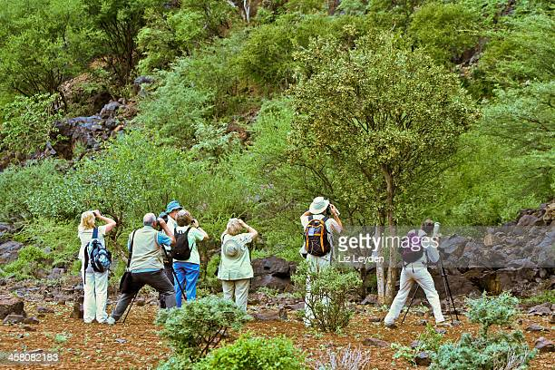 Group of people birding the Rift Valley escarpment, Baringo, Kenya