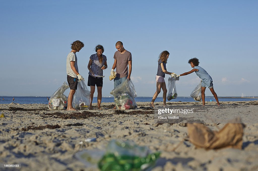 Group of people collecting trash on beach : Stock Photo