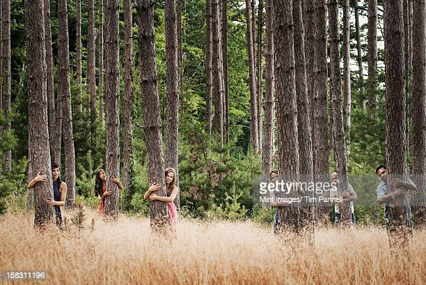 A group of people communing with nature, and hugging tall straight trees in woodland.