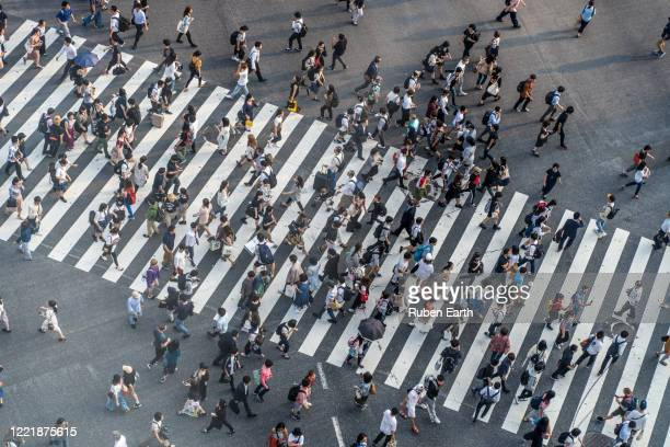 group of people crossing the street on a crosswalk - demography stock pictures, royalty-free photos & images