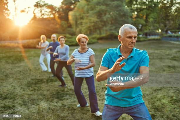 group of people doing tai chi in a park - fitness or vitality or sport and women stock photos and pictures