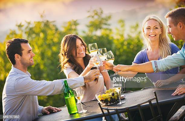group of people drinking wine outdoors. - wine vineyard stock photos and pictures