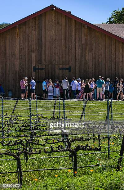Group of people enjoy tasting wine at Zaca Mesa Winery on April 8 near Los Olivos, California. Because of its close proximity to Southern California...