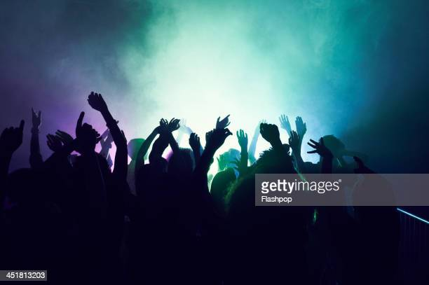 group of people having fun at music concert - dancing stockfoto's en -beelden
