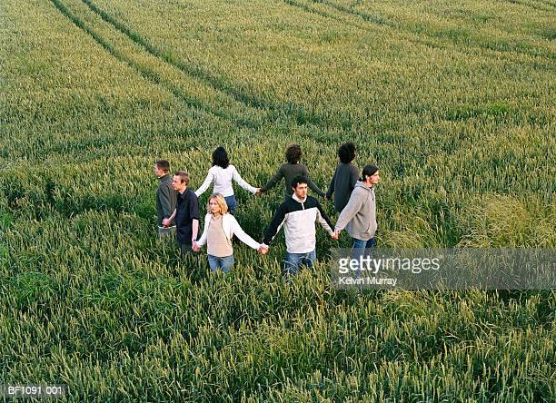 group of people in field holding hands to form ring, elevated view - crop circle stock pictures, royalty-free photos & images