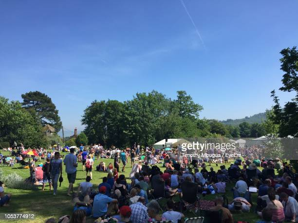 group of people in park against blue sky - music festival stock pictures, royalty-free photos & images