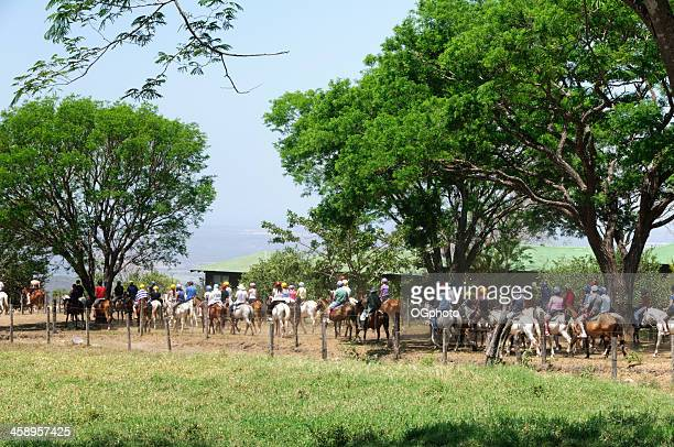 group of people on horseback tour - ogphoto stock photos and pictures