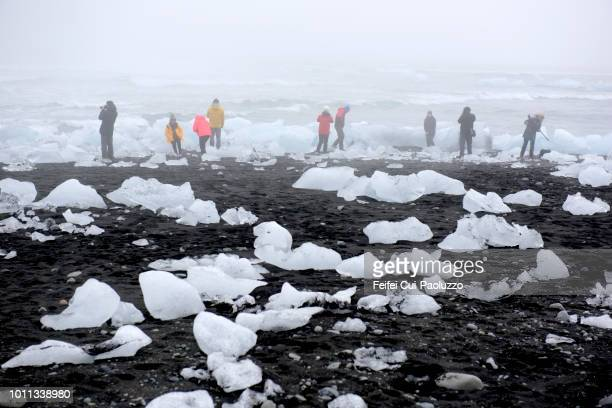 group of people on the beach of jökulsárlón, east iceland - austurland stock pictures, royalty-free photos & images